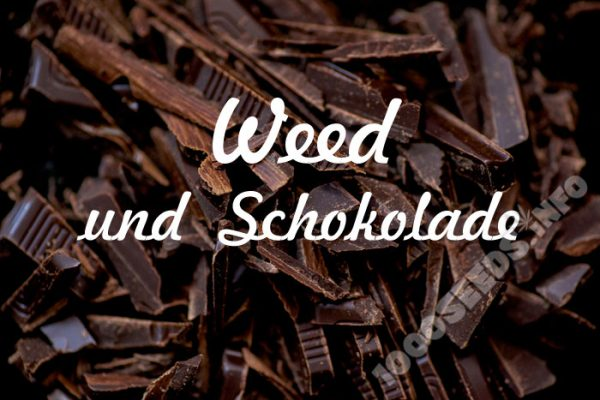 Schokolade und Cannabis, der Einfluß von Schokolade auf das High, Cannabis Blog 1000Seeds