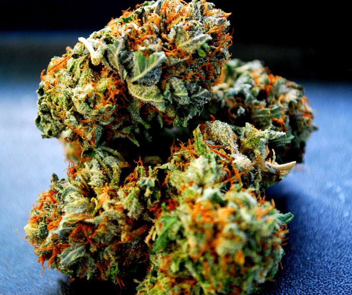 die Potenz von Marijuana, trichome und Potenz