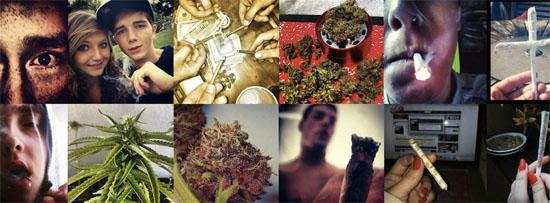 IQ Jugendliche Cannabis