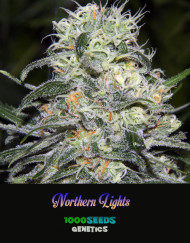 Northern-Lights, feminized Seeds, 1000Seeds Genetics