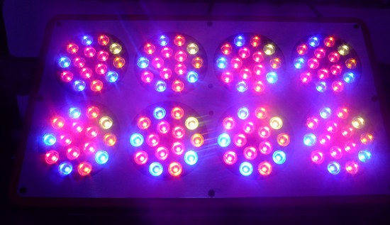 Orion LED