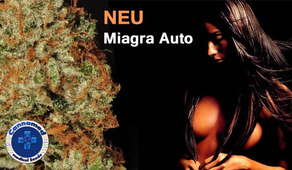 Miagra Auto