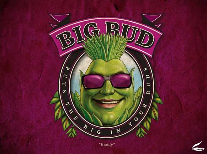 Big-Bud Advanced nutrients