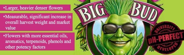 Big Bud von Advanced Nutrients