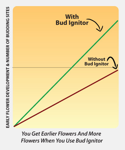 Bud Ignitor, Advanced Nutrients. Booster