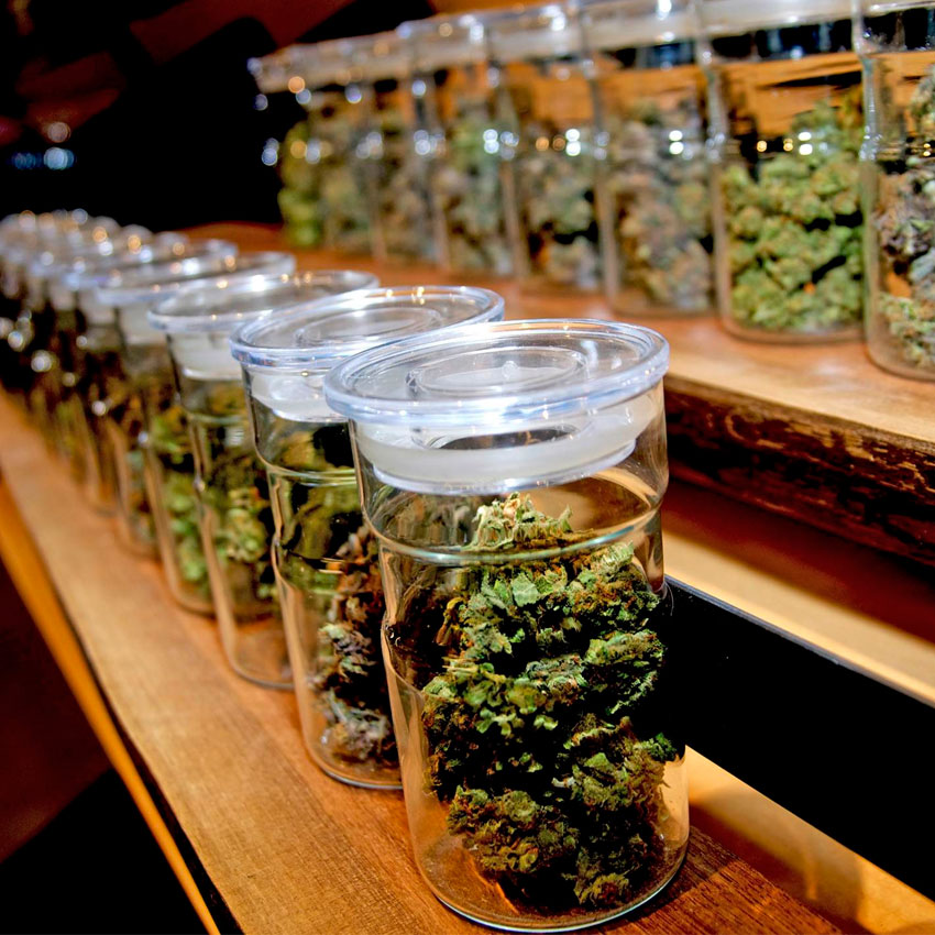 CSC, Cannabis Social Club