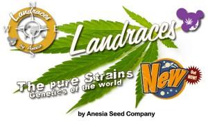 slider-landraces