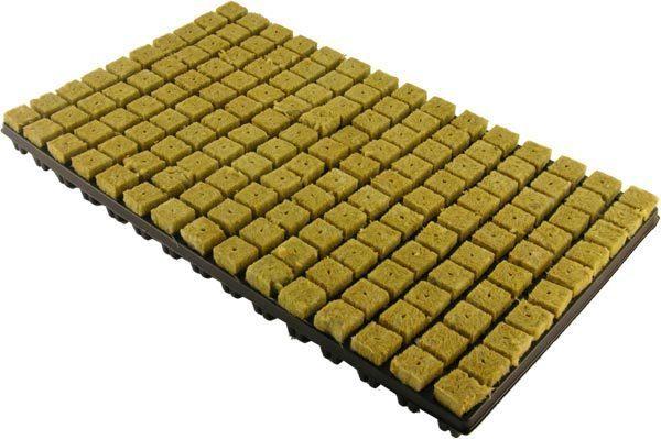 Steinwollblöcke mit Plastikunterteil SBS, 2,5 x 2,5cm, 150 Stück