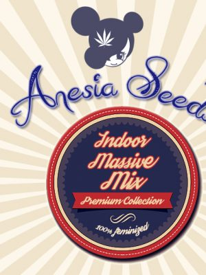 Indoor Massive Mix (Anesia Seeds), 15 feminisierte Samen