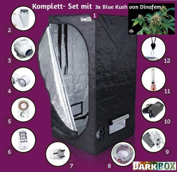 """Komplett-Set """"Blue Kush"""", 80x80x160cm, 400W"""