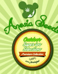 Outdoor Superior Selection (Anesia Seeds), 15 feminisierte Samen