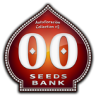 Auto Collection #2 (00 Seeds), 6 automatic Seeds