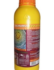 Bachumus Evolution Bloom von Trabe