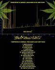Big Bang (Green House Seed), feminisierte Samen