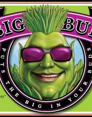 Big Bud Liquid (Advanced Nutrients), 500ml oder 1 L