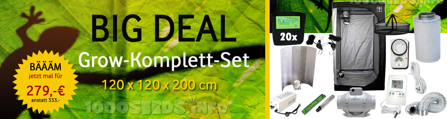 Big-Deal Grow-Komplett-Set