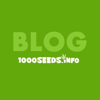 Blog 1000Seeds, Cannaabis-Blog, Infos zu Cannabis, Infos Grow, Grow-Tipps