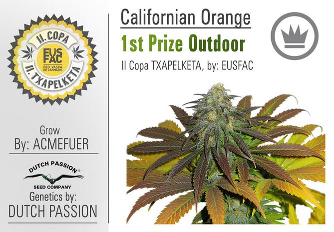 California Orange (Dutch Passion), 3 feminisierte Samen