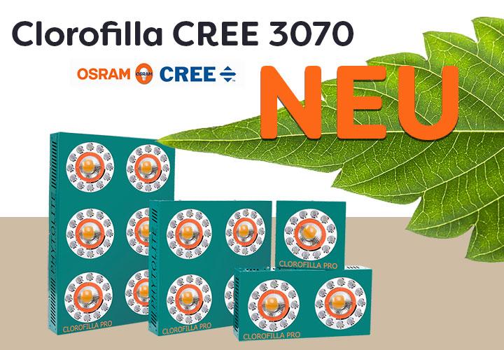 Clorofilla-LED-neu