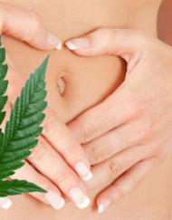 Cannabis-Tee Cannabico Digestivo, 50g