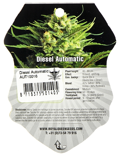 Diesel Automatic (Royal Queen Seeds), 5 autoflowering Samen