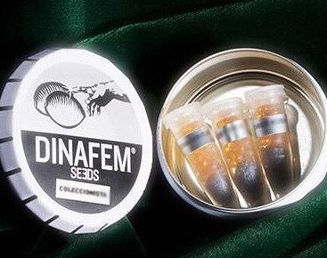Dinafem Collectors Pack No. 9