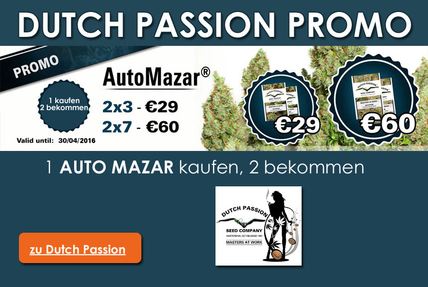 Dutch-Passion-promo