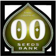 Female Collection #2 (00 Seeds), 6 feminisierte Samen