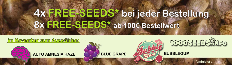 Free-Seeds-November, Seedshop
