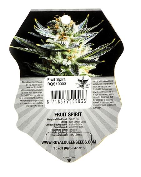 Fruit Spirit (Royal Queen Seeds), 3 feminisierte Samen
