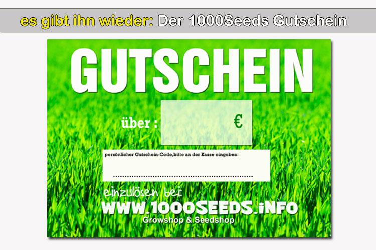 Gutschein-1000Seeds.info