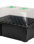 X-Stream, aeroponisches Stecklingsgewächshaus für bis zu 40 Stecklinge