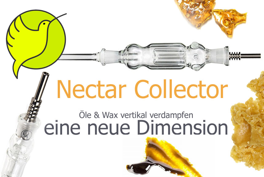 Nectar Collector, Dabbing