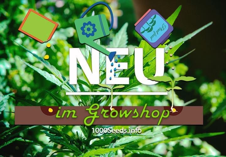 Growshop Neuheiten