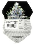 Northern Light Automatic (Royal Queen Seeds), 3 autofeminisierte Samen