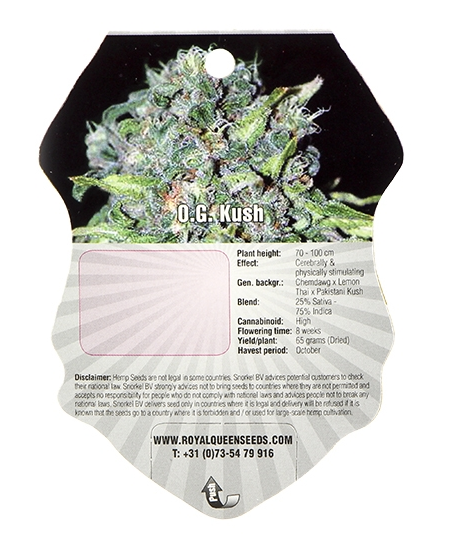 O.G. Kush (Royal Queen Seeds), 3 feminisierte Samen