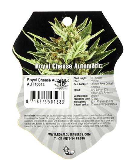 Royal Cheese Automatic (Royal Queen Seeds), 5 autoflowering Samen