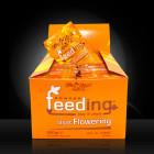 Green House Powder Feeding - short Flowering, 50 Beutel á 10g