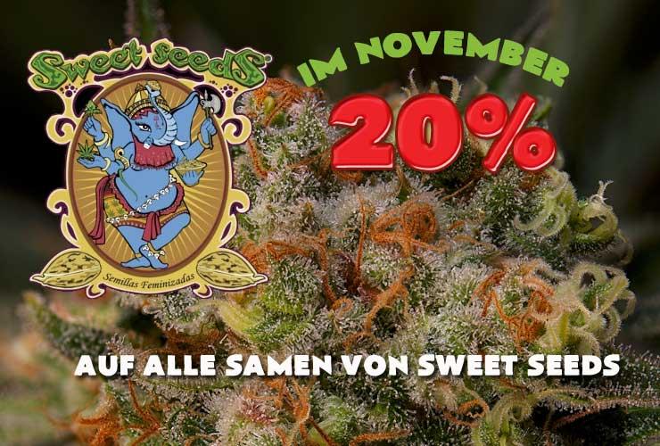 20% auf Sweet Seeds, Prozente im November