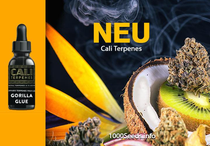 Terpene-Cannabis-kaufen