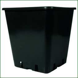 Topf, viereckig, 11 L, schwarz für Wilma-System