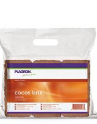 6x Cocos Brix von Plagron, gepuffert