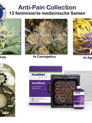 medical Collection - Anti Pain (Cannamed), 12 feminisierte Samen