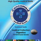 medical Collection - Digestivo (Cannamed), 12 feminisierte Samen