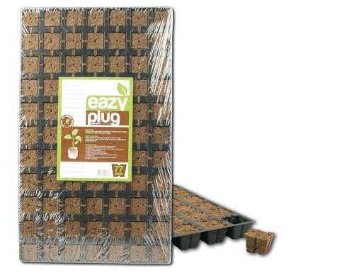 Eazy Plug®, Stecklingsblöcke, Tray à 77 Stk., Würfelgröße 3,5 x 3,5 cm