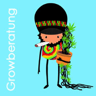 growberatung, Beratung zu Produkten, Beratung Cannabisanbau, Beratung von Juan