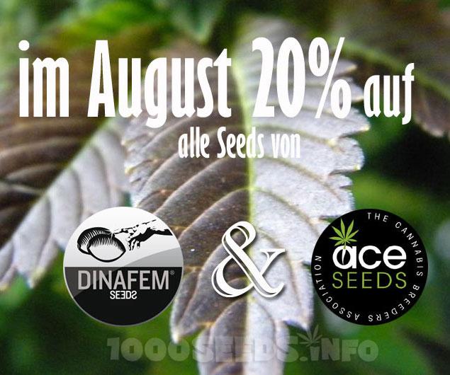 prozente-August, Prozente auf Cannabis-Samen, Seedshop 1000Seeds