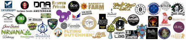 Cannabis Samen kaufen, Seedbanken, Seedshop