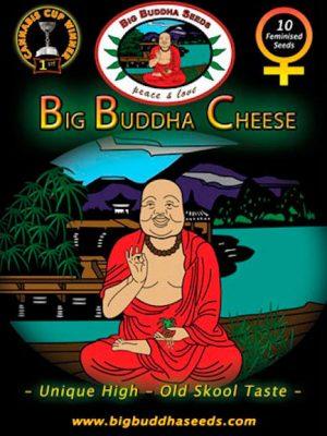 Big-Buddha-Cheese