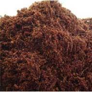 Koko-Substrat